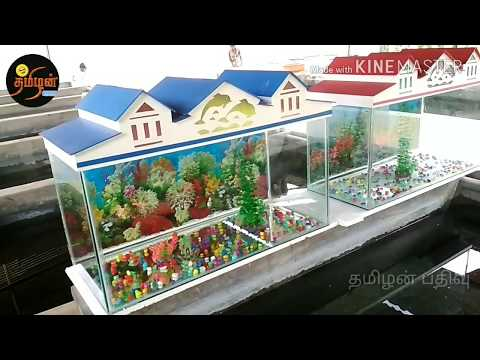 All Size Fish Tank And Setup Info