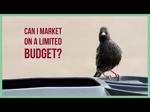 Can I Market On A Limited Budget? - FREE Online Digital Marketing Training