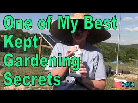 OGH - Off Grid Homesteading - One of My Best Kept Gardening Secrets