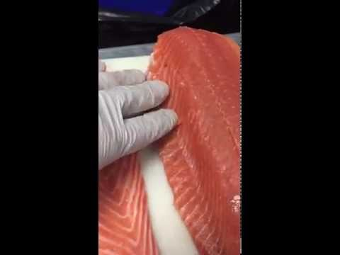 The difference between wild salmon and Scottish Salmon from the Faroe Islands