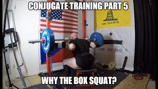 Conjugate Training Part 5 - Why The Box Squat?