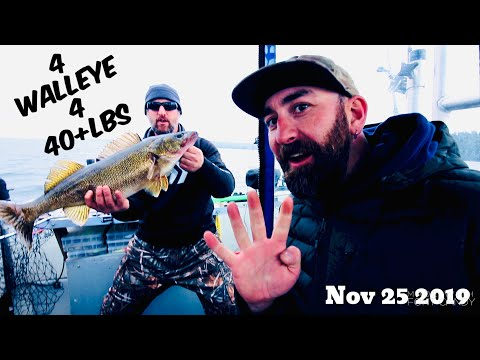 FOUR WALLEYE FOR OVER 40LBS~ Bay Of Quinte SMASH FEST