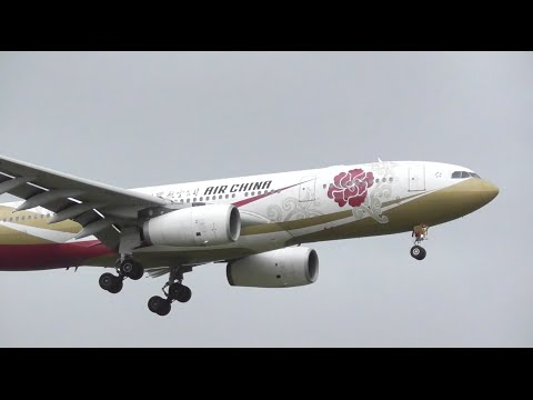 """SPECIAL LIVERY 