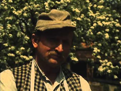 """From """"Postřižiny"""" (1981) - Jiří Menzel"""