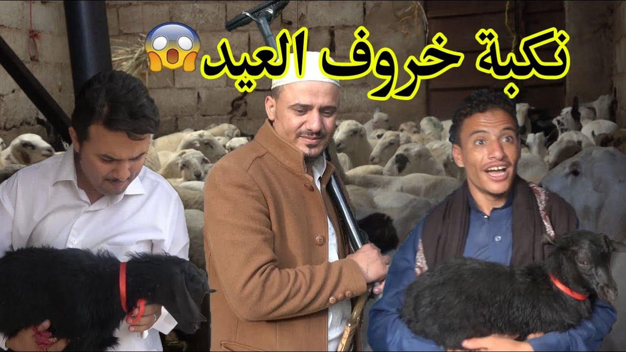 نكبة خروف العيد !!