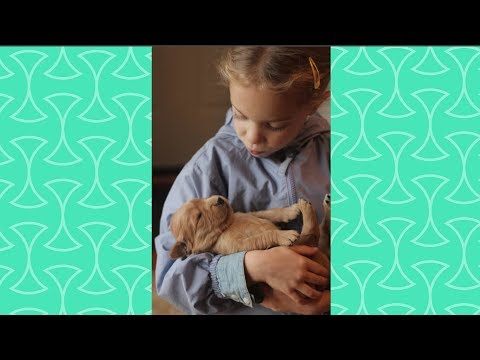 Funny Kids Sing a Lullaby for sleepy puppy - CUte Dog and baby Videos
