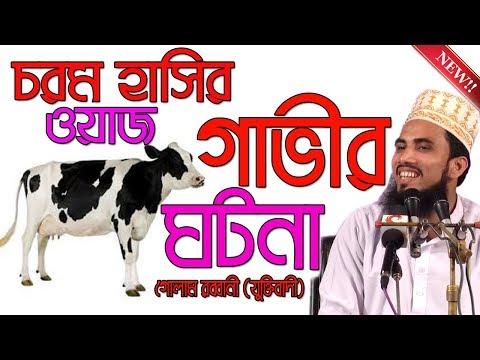 চরম হাসির ওয়াজ,গাভীর ঘটনা ,Golam Rabbani , Bangla Waz 2018, Islamic Waz Bogra,Bangla Mahfil,Full HD