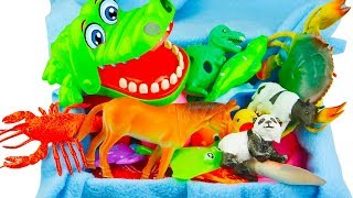 Lots of Zoo Wild Animals With Safari Videos Learn Colors For Children