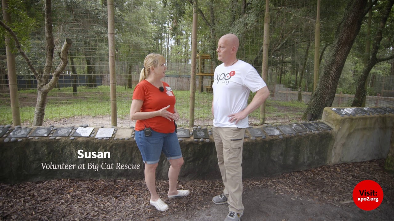 Big Cat Rescue XPO2 Program Page