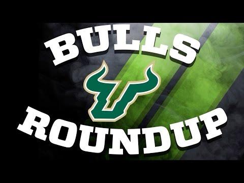 Bulls Roundup #5