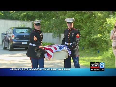 Family says goodbye to Marine war dog