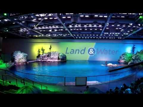 Land & Water show - Shedd Aquarium