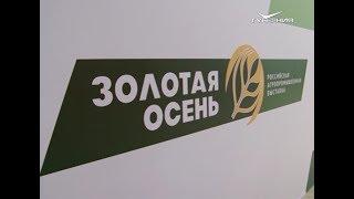 Самарская область на выставке Золотая осень. Новости Губернии от 9 октября