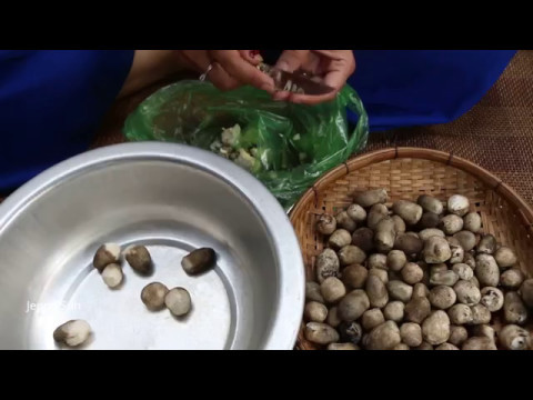 Vegetarian Recipe Compilation , Cooking Vegetarian Recipe In My Family, Cambodian Cooking At Home