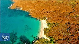 Islas Canarias - Documental Completo