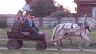 Лошадь с телегой едет по деревне