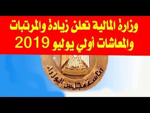 a448897e9d088 وزير المالية يعلن زيادة المرتبات والمعاشات أول يوليو 2019 ونسبة الزيادة  المقررة