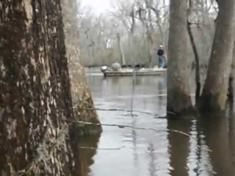 Guys Fishing for Shad off of a bridge in Eastern North Carolina