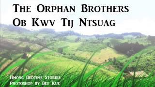 The Orphan Brothers Ob Kwv Tij Ntsuag