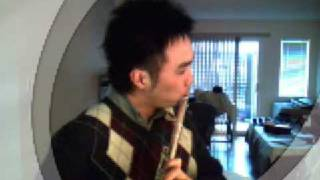 mozart kv 545 2nd movement on flute