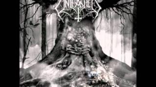 Unleashed - Chief Einherjar
