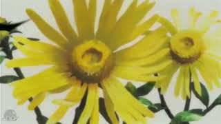 interdit aux USA extraits choisis de Earth Girl Arjuna (地球少女ア...