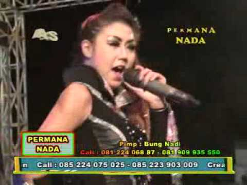 GOWER by DUO DESA MPEG1 VCD PAL