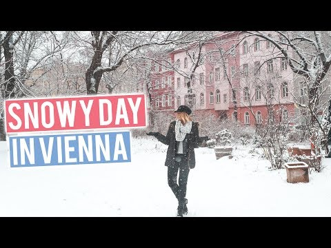 SNOWY DAY IN VIENNA | What to do in Winter in Austria