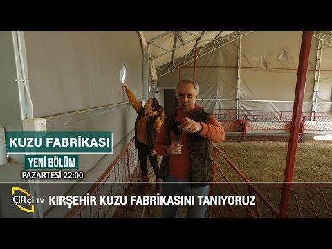 Kırşehir Kuzu Fabrikası - KUZU FABRİKASI #küçükbaş #hayvancılık #besicilik