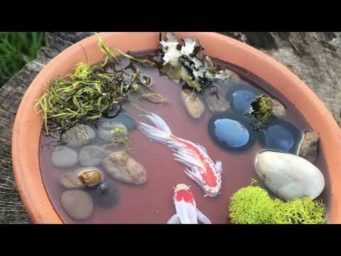 Mini KOI FISH ponds - RESIN ART - Handpainted Koi Fish - by Karen Governale
