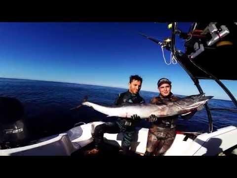 SPEARFISHING - NewCaledonia - BlueWater addiction  part 3