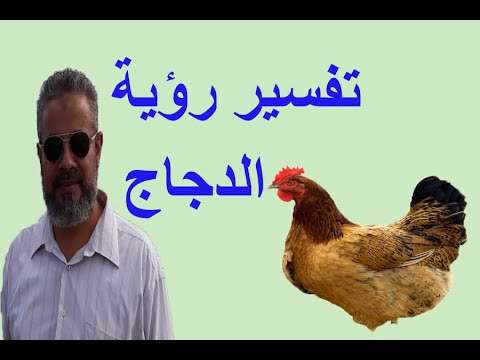 تفسير الدجاج للعزباء والمتزوجة والرجل في المنام اسماعيل الجعبيري Youtube
