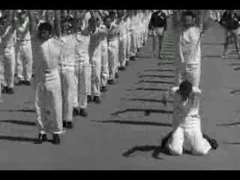 Sailor Beware - Navy Training