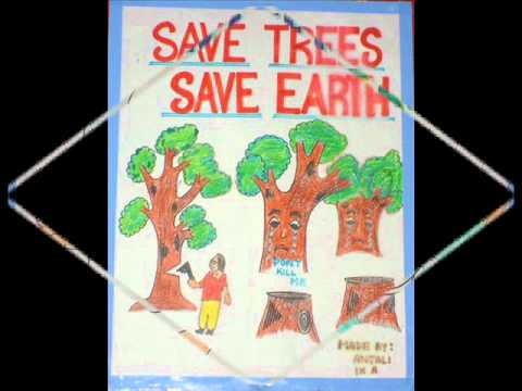 GLIMPSE OF SLOGAN WRITING COMPETITION.wmv: We organized a SLOGAN WRITING COMPETITION to know what the small children think they can do to save earth