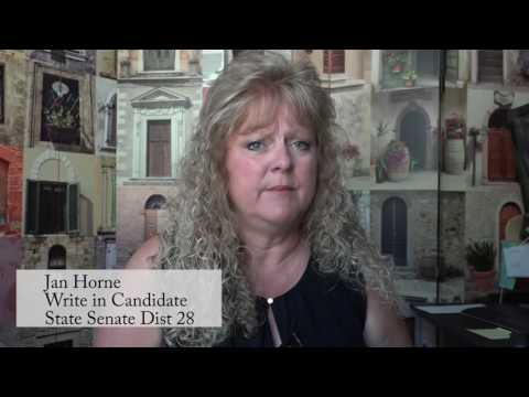 Jan Horne Write in Candidate for District 28