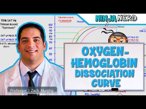 Respiratory | Oxygen-Hemoglobin Dissociation Curve