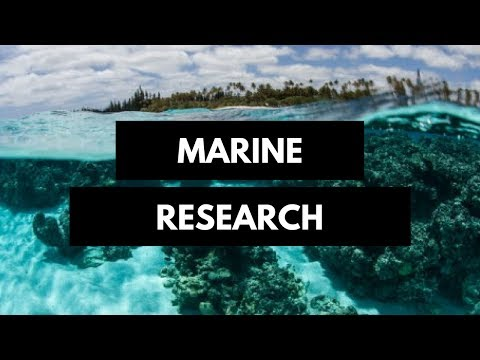 Marine research in the Indian Ocean