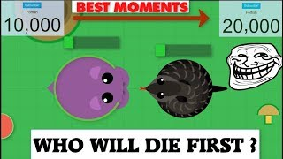 Mope.io // BESTS MOMENTS AND KILLS COMPILATIONS // From 10K to 20K // 20K Special