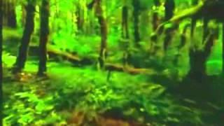 geibheann movie 0001