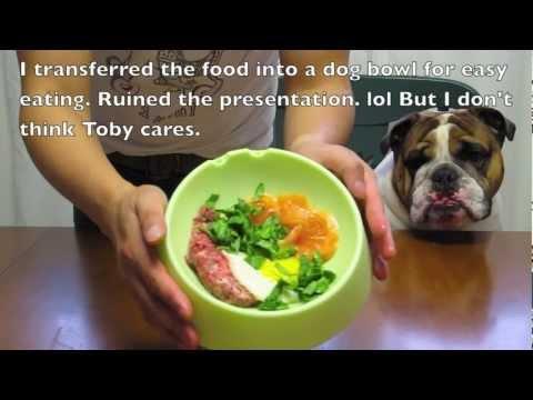 Good Food, Good Dog - Sunday Brunch