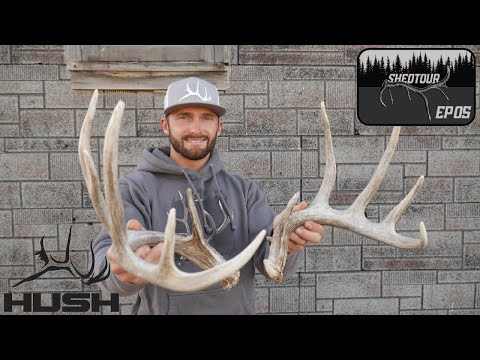 EPIC WHITETAIL SHED HUNT! FIRST BROWN SET | SHED TOUR EP5