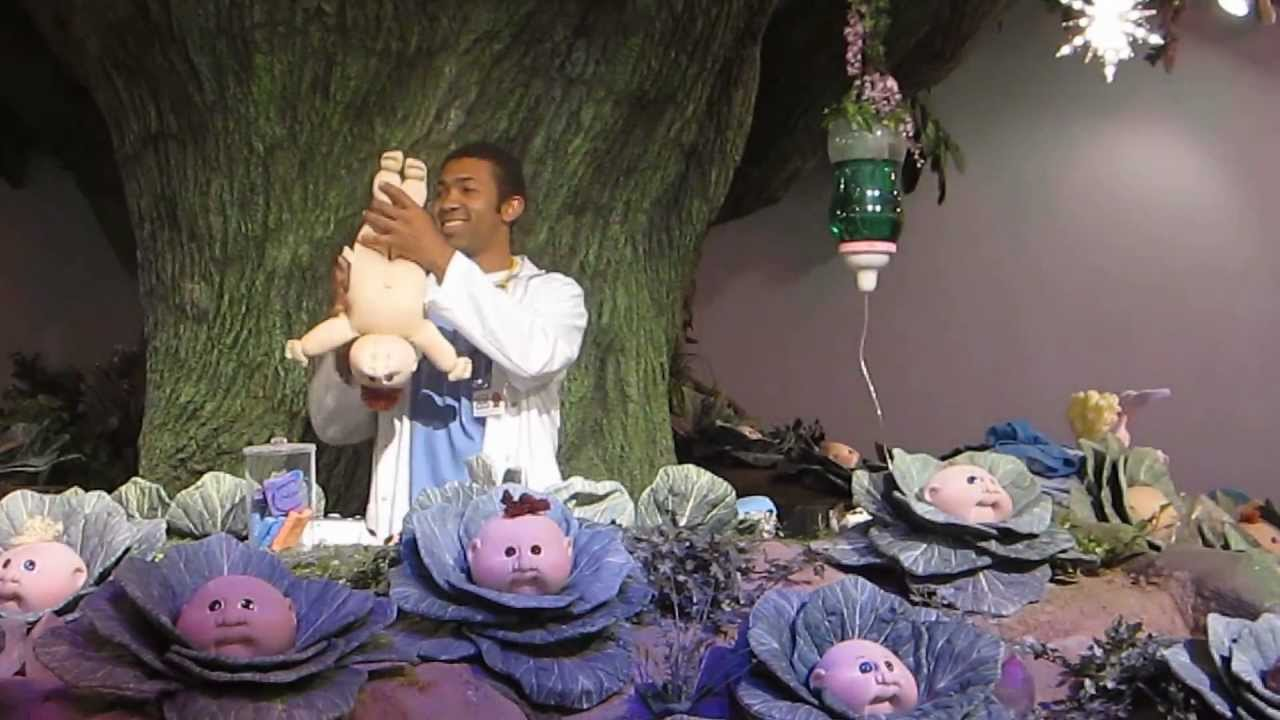 Mother Cabage Giving Borth To Cabbage Patch Baby