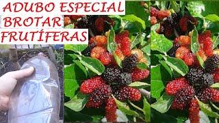 Adubo Especial Fácil Para Germinar Qualquer Frutífera