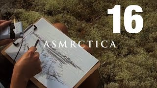 ASMR In the forest 3 - Open Air Close Up Pencil drawing - Soft spoken Sleep Aid