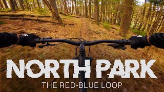 North Park Mountain Bike Trails // The Red-Blue Loop