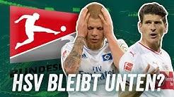 Was wird aus dem HSV? Was macht der VfB Stuttgart falsch? Ist Favre der richtige Mann für den BVB?