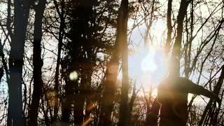 Bartosz Makowski & Ridge - The Night The Pugilist Learned How to Dance (Sting)