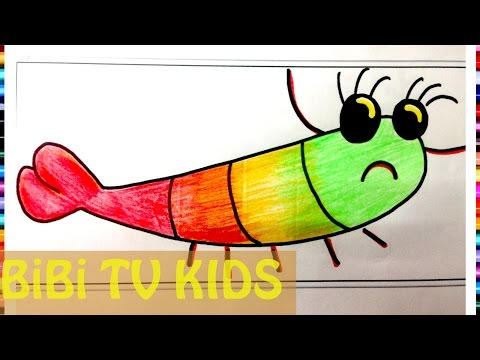 Tô màu con tôm | Con tôm tích | con bề bề | Tôm sú | shrimp animal coloring | 161