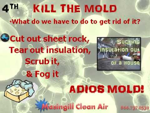 7 steps to kill mold youtube. Black Bedroom Furniture Sets. Home Design Ideas