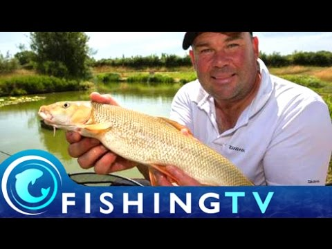 Fishing for Carp and Barbel on Snake Lakes - Fishing TV
